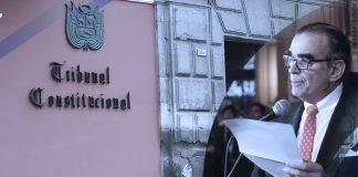 Tribunal Constitucional - Pedro Olaechea (Foto: Congreso)